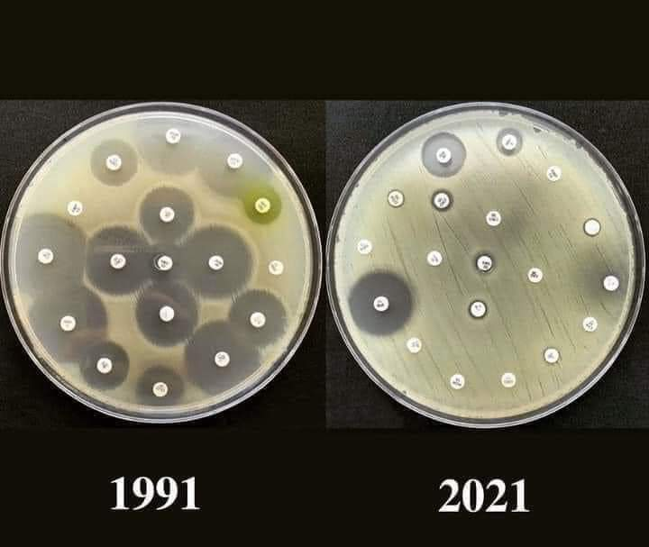 Antibiotic Resistance: A silent killer of modern times